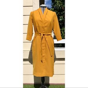 COS Marigold Belted Button Front Belted Dress